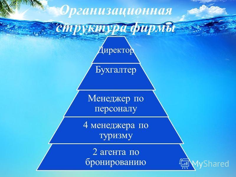 Организационная структура фирмы Директор Бухгалтер Менеджер по персоналу 4 менеджера по туризму 2 агента по бронированию