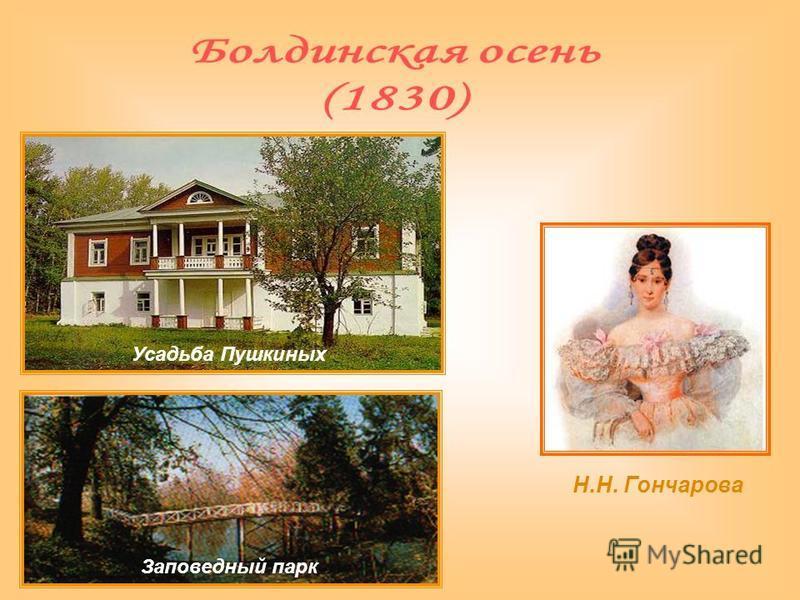 Усадьба Пушкиных Заповедный парк Н.Н. Гончарова