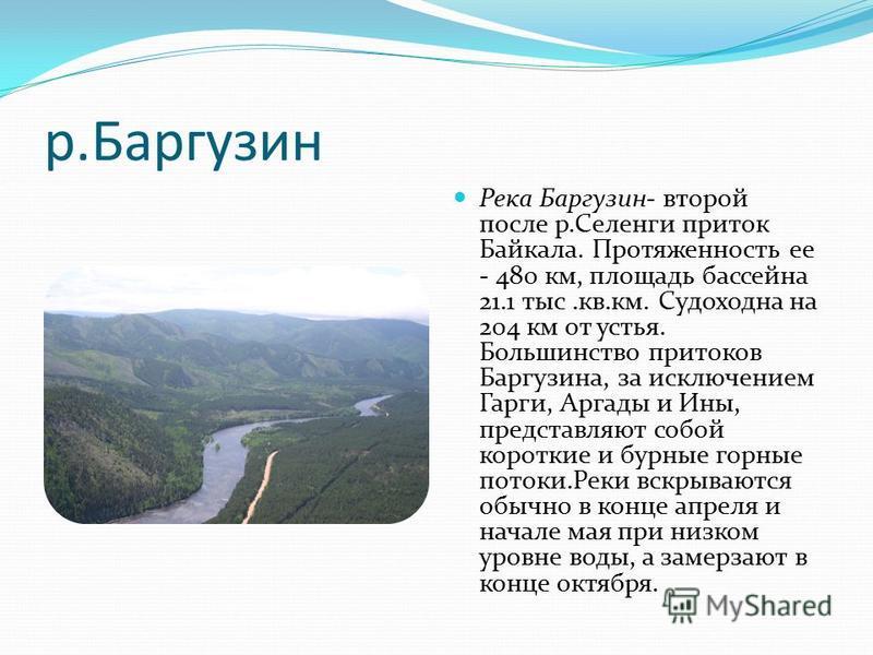 р.Баргузин Река Баргузин- второй после р.Селенги приток Байкала. Протяженность ее - 480 км, площадь бассейна 21.1 тыс.кв.км. Судоходна на 204 км от устья. Большинство притоков Баргузина, за исключением Гарги, Аргады и Ины, представляют собой короткие