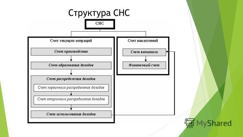 Структура СНС