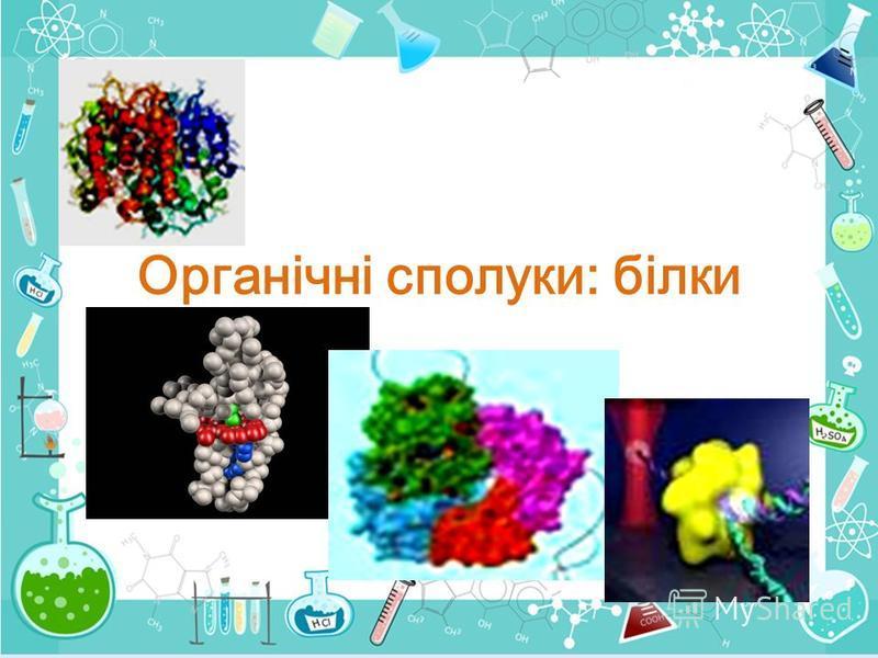 Органічні сполуки: білки