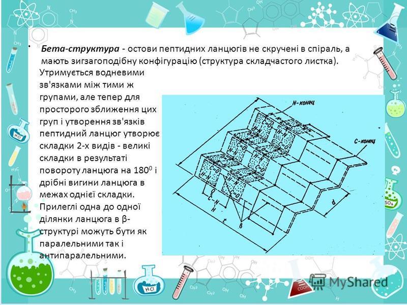 . Бета-структура - остови пептидних ланцюгів не скручені в спіраль, а мають зигзагоподібну конфігурацію (структура складчастого листка). Утримується водневими зв'язками між тими ж групами, але тепер для просторого зближення цих груп і утворення зв'яз