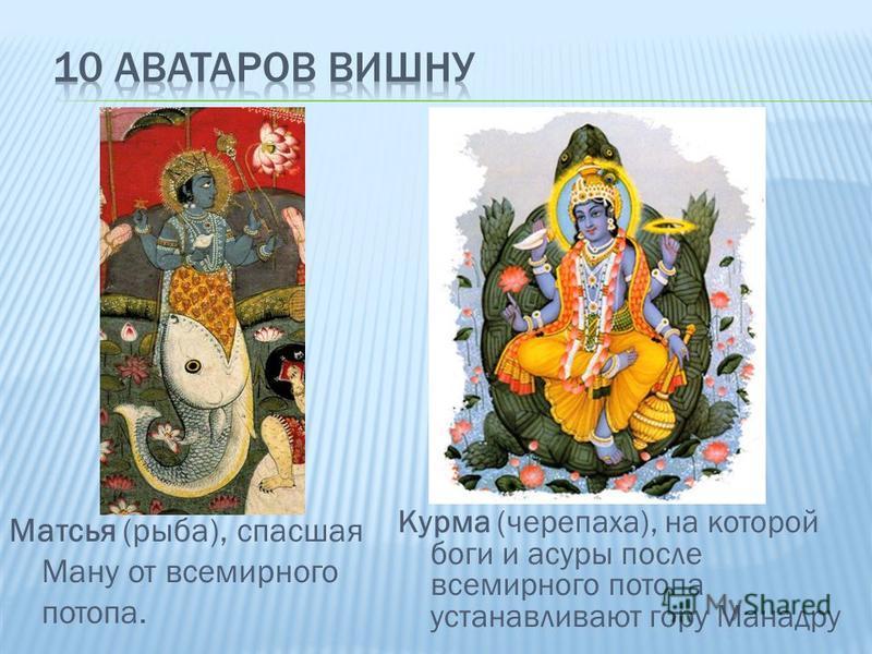 Курма (черепаха), на которой боги и асуры после всемирного потопа устанавливают гору Манадру Матсья (рыба), спасшая Ману от всемирного потопа.