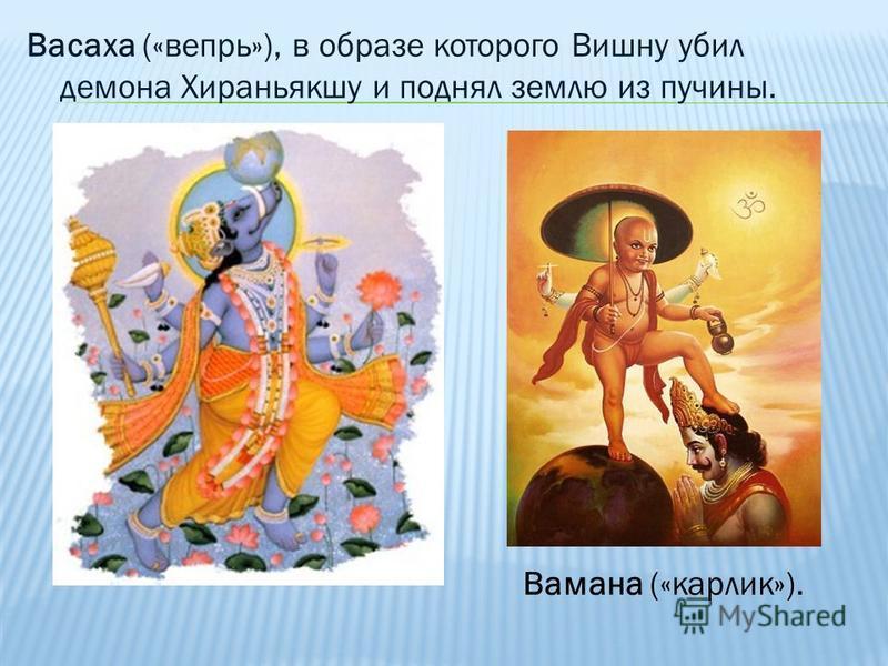 Васаха («вепрь»), в образе которого Вишну убил демона Хираньякшу и поднял землю из пучины. Вамана («карлик»).