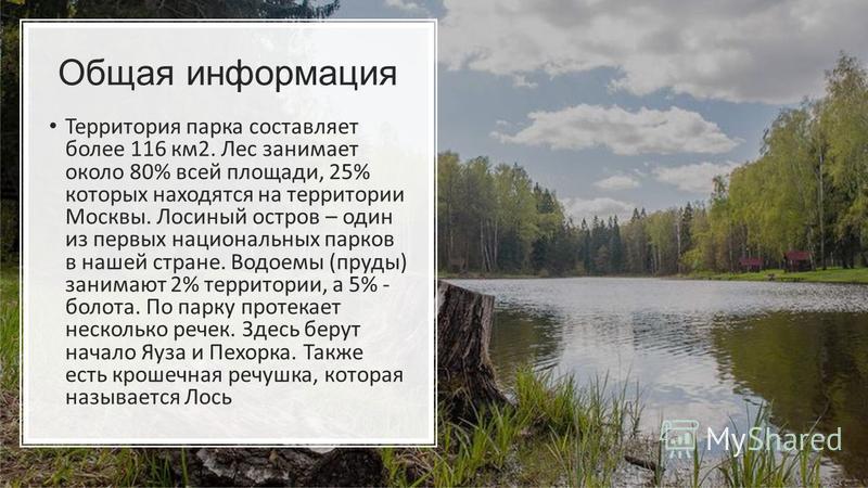 Общая информация Территория парка составляет более 116 км 2. Лес занимает около 80% всей площади, 25% которых находятся на территории Москвы. Лосиный остров – один из первых национальных парков в нашей стране. Водоемы (пруды) занимают 2% территории,