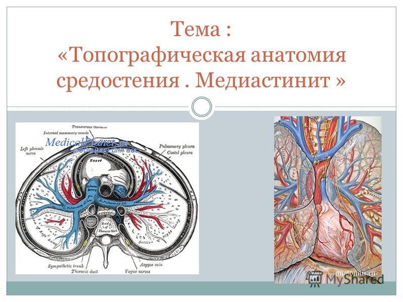 Тема : «Топографическая анатомия средостения. Медиастинит »