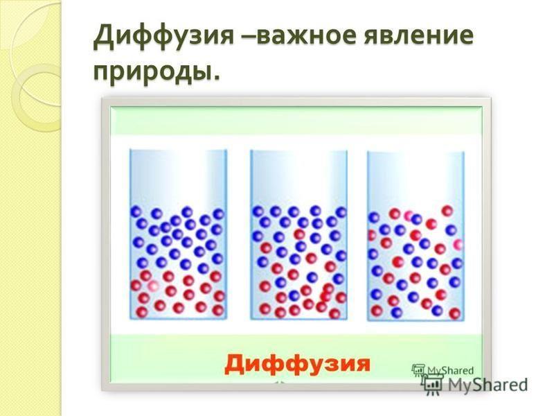 Диффузия – важное явление природы.