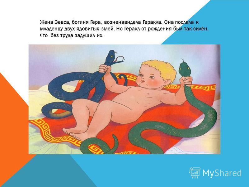 Жена Зевса, богиня Гера, возненавидела Геракла. Она послала к младенцу двух ядовитых змей. Но Геракл от рождения был так силён, что без труда задушил их.