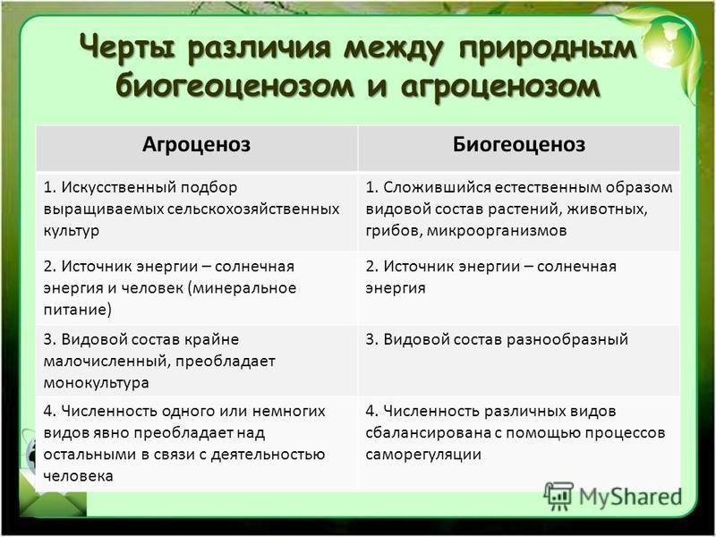 Черты различия между природным биогеоценозом и агроценозом Агроценоз Биогеоценоз 1. Искусственный подбор выращиваемых сельскохозяйственных культур 1. Сложившийся естественным образом видовой состав растений, животных, грибов, микроорганизмов 2. Источ