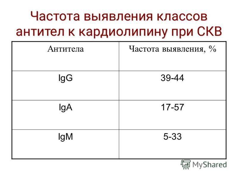 Антитела Частота выявления, % IgG39-44 IgA17-57 IgM5-33