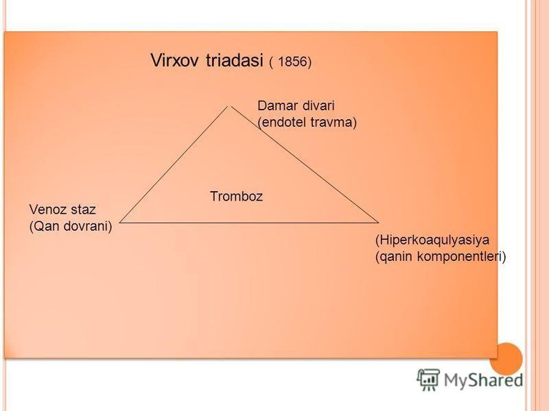Virxov triadasi ( 1856) Tromboz Venoz staz (Qan dovrani) Damar divari (endotel travma) (Hiperkoaqulyasiya (qanin komponentleri)