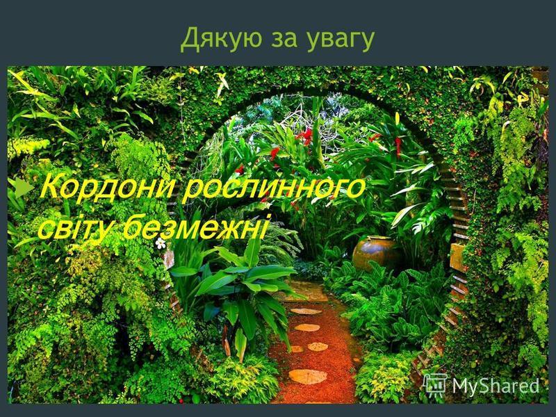 Дякую за увагу Кордони рослинного світу безмежні