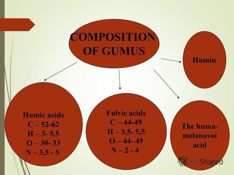 COMPOSITION OF GUMUS Humic acids С – 52-62 Н – 3- 5,5 О – 30- 33 N – 3,5 - 5 Fulvic acids С – 44-49 Н – 3,5- 5,5 О – 44- 49 N – 2 - 4 The huma- melanovoi acid Humin