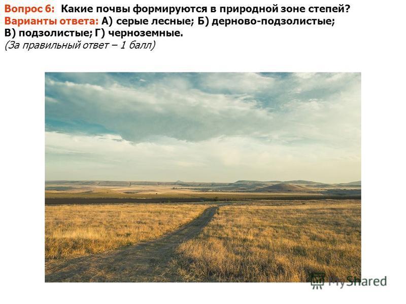 Вопрос 6: Какие почвы формируются в природной зоне степей? Варианты ответа: А) серые лесные; Б) дерново-подзолистые; В) подзолистые; Г) черноземные. (За правильный ответ – 1 балл)
