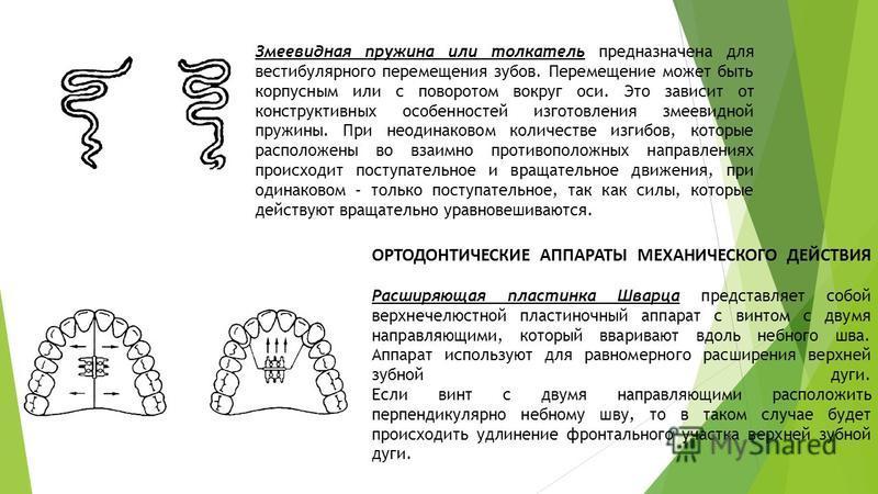 Змеевидная пружина или толкатель предназначена для вестибулярного перемещения зубов. Перемещение может быть корпусным или с поворотом вокруг оси. Это зависит от конструктивных особенностей изготовления змеевидной пружины. При неодинаковом количестве