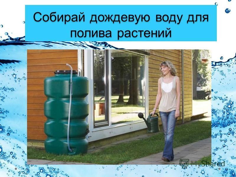 Собирай дождевую воду для полива растений