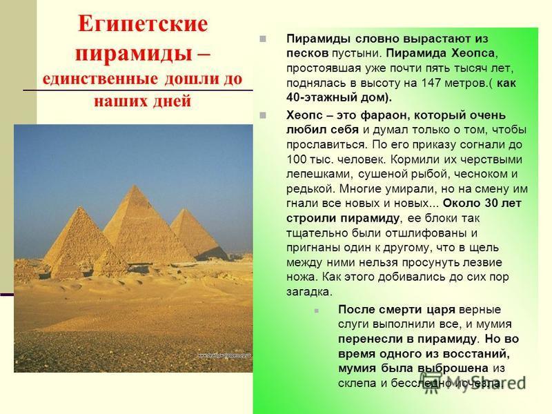 Египетские пирамиды – единственные дошли до наших дней Пирамиды словно вырастают из песков пустыни. Пирамида Хеопса, простоявшая уже почти пять тысяч лет, поднялась в высоту на 147 метров.( как 40-этажный дом). Хеопс – это фараон, который очень любил