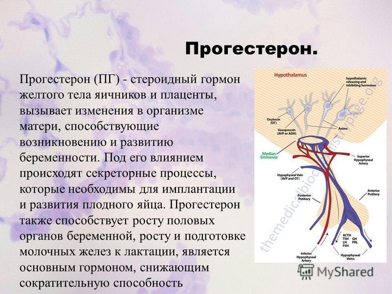 Прогестерон. Прогестерон (ПГ) - стероидный гормон желтого тела яичников и плаценты, вызывает изменения в организме матери, способствующие возникновению и развитию беременности. Под его влиянием происходят секреторные процессы, которые необходимы для