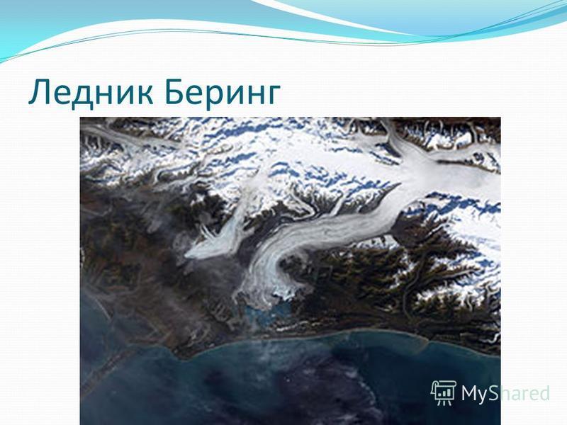 Ледник Беринг
