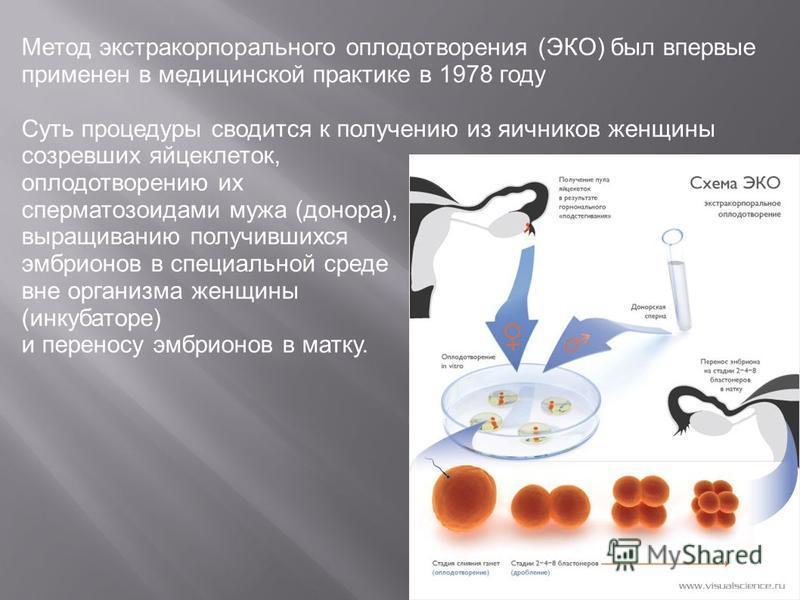 Метод экстракорпорального оплодотворения (ЭКО) был впервые применен в медицинской практике в 1978 году Суть процедуры сводится к получению из яичников женщины созревших яйцеклеток, оплодотворению их сперматозоидами мужа (донора), выращиванию получивш