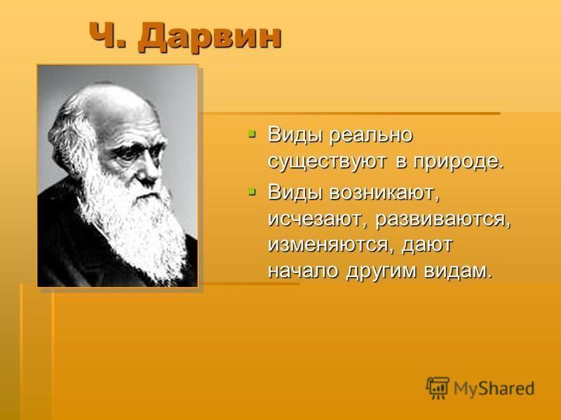 Ч. Дарвин Виды реально существуют в природе. Виды реально существуют в природе. Виды возникают, исчезают, развиваются, изменяются, дают начало другим видам. Виды возникают, исчезают, развиваются, изменяются, дают начало другим видам.