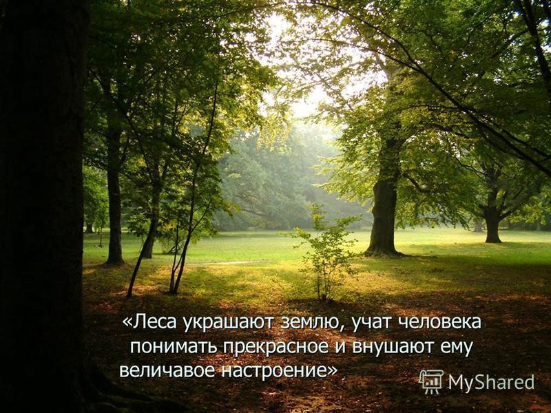 «Леса украшают землю, учат человека понимать прекрасное и внушают ему величавое настроение» величавое настроение»