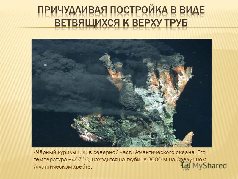«Чёрный курильщик» в северной части Атлантического океана. Его температура +407°С, находится на глубине 3000 м на Срединном Атлантическом хребте.