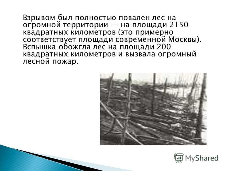 Взрывом был полностью повален лес на огромной территории на площади 2150 квадратных километров (это примерно соответствует площади современной Москвы). Вспышка обожгла лес на площади 200 квадратных километров и вызвала огромный лесной пожар.