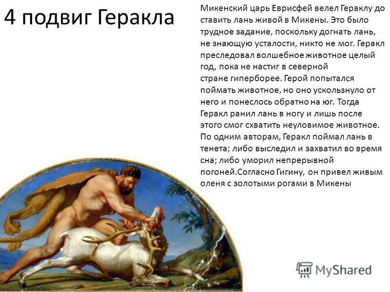 4 подвиг Геракла Микенский царь Еврисфей велел Гераклу до ставить лань живой в Микены. Это было трудное задание, поскольку догнать лань, не знающую усталости, никто не мог. Геракл преследовал волшебное животное целый год, пока не настиг в северной ст