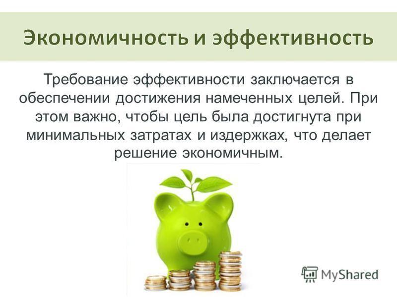 Требование эффективности заключается в обеспечении достижения намеченных целей. При этом важно, чтобы цель была достигнута при минимальных затратах и издержках, что делает решение экономичным.