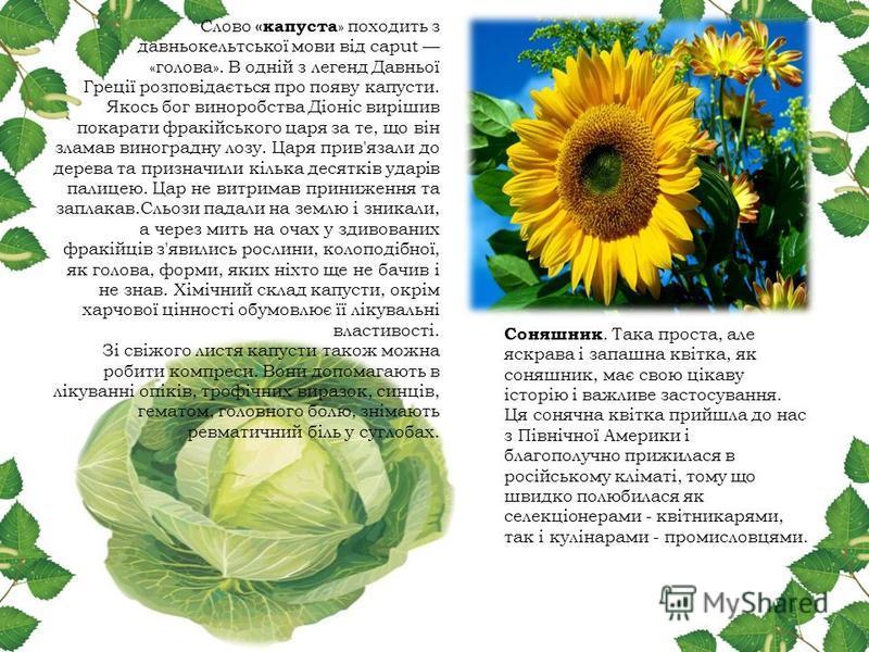 реферат на тему рослини мандрвники 6 клас