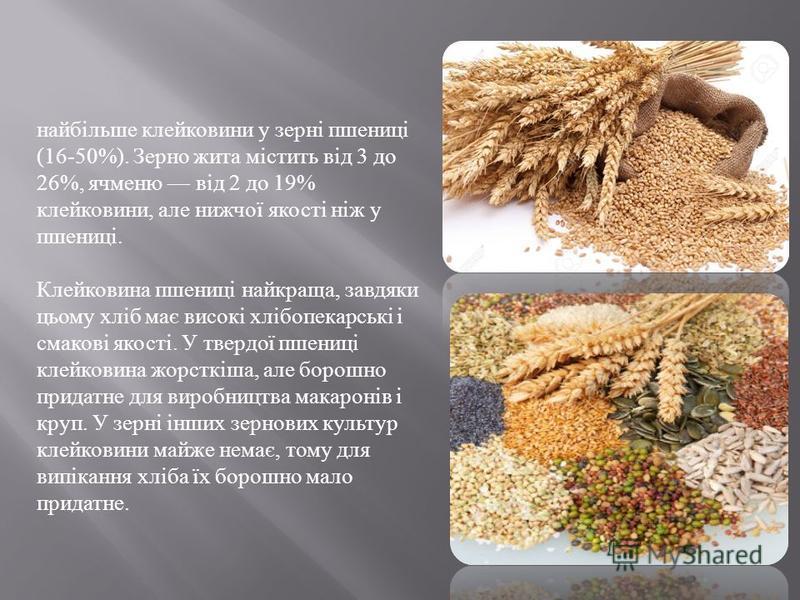 найбільше клейковини у зерні пшениці (16-50%). Зерно жита містить від 3 до 26%, ячменю від 2 до 19% клейковини, але нижчої якості ніж у пшениці. Клейковина пшениці найкраща, завдяки цьому хліб має високі хлібопекарські і смакові якості. У твердої пше