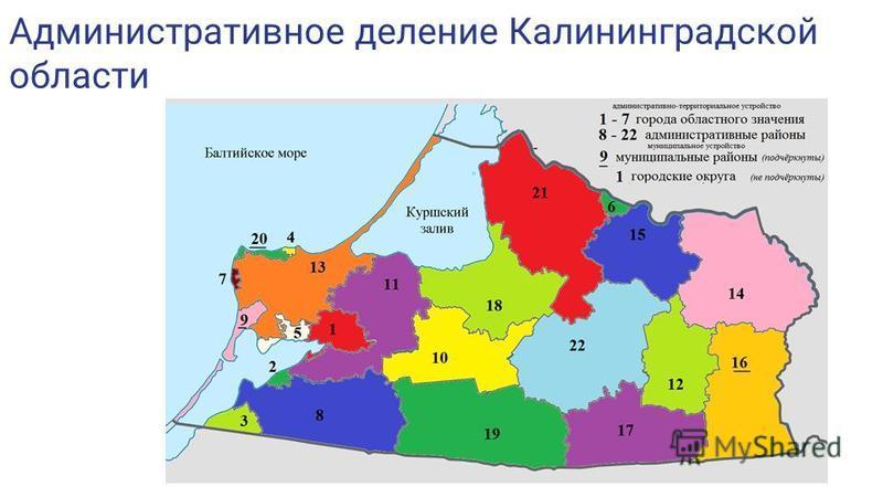 Административное деление Калининградской области