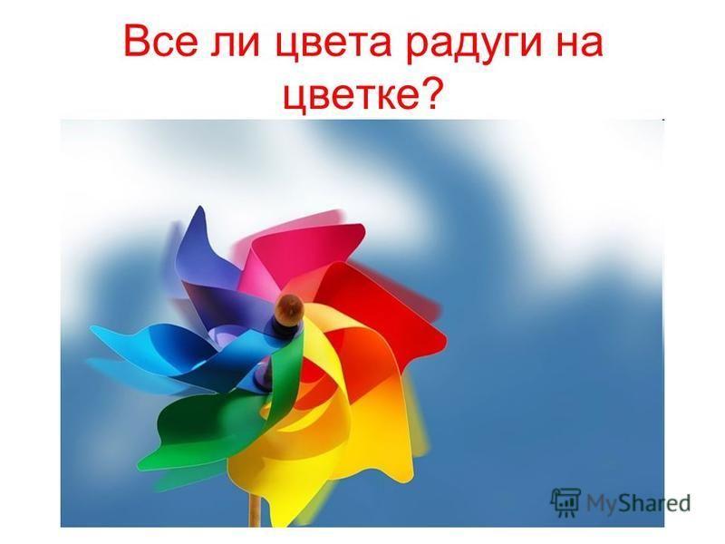 Все ли цвета радуги на цветке?