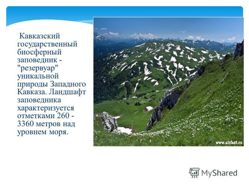 Кавказский государственный биосферный заповедник - резервуар уникальной природы Западного Кавказа. Ландшафт заповедника характеризуется отметками 260 - 3360 метров над уровнем моря.