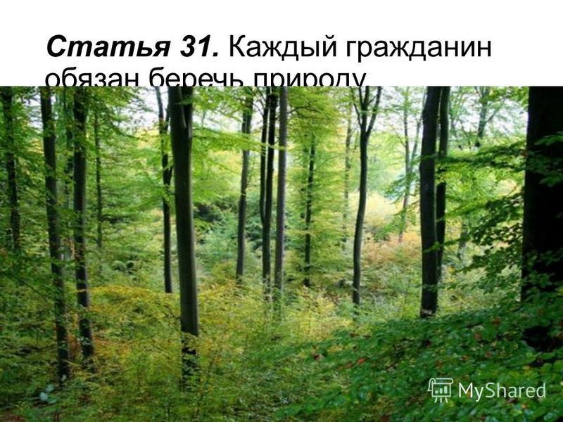 Статья 31. Каждый гражданин обязан беречь природу.
