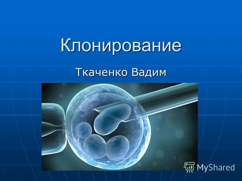 Клонирование Ткаченко Вадим