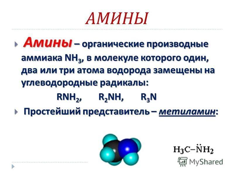 АМИНЫ Амины – органические производные аммиака NH 3, в молекуле которого один, два или три атома водорода замещены на углеводородные радикалы : Амины – органические производные аммиака NH 3, в молекуле которого один, два или три атома водорода замеще