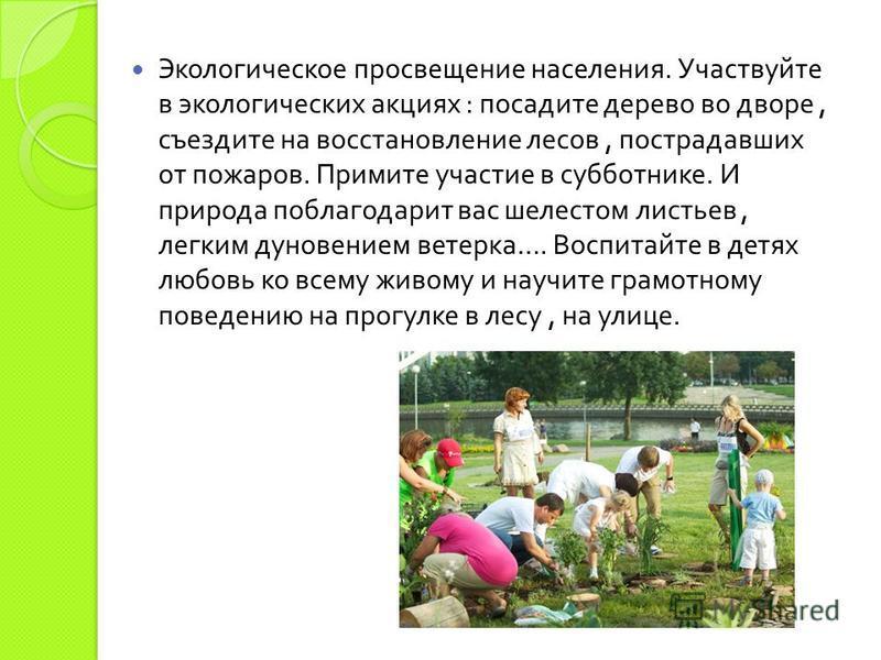 Экологическое просвещение населения. Участвуйте в экологических акциях : посадите дерево во дворе, съездите на восстановление лесов, пострадавших от пожаров. Примите участие в субботнике. И природа поблагодарит вас шелестом листьев, легким дуновением