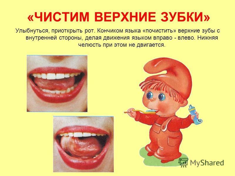 «ЧИСТИМ ВЕРХНИЕ ЗУБКИ» Улыбнуться, приоткрыть рот. Кончиком языка «почистить» верхние зубы с внутренней стороны, делая движения языком вправо - влево. Нижняя челюсть при этом не двигается.