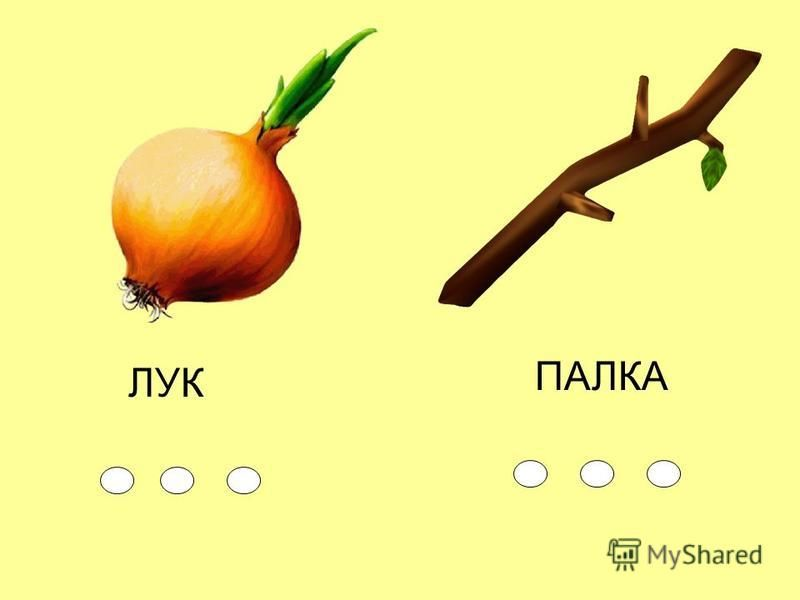 ЛУК ПАЛКА