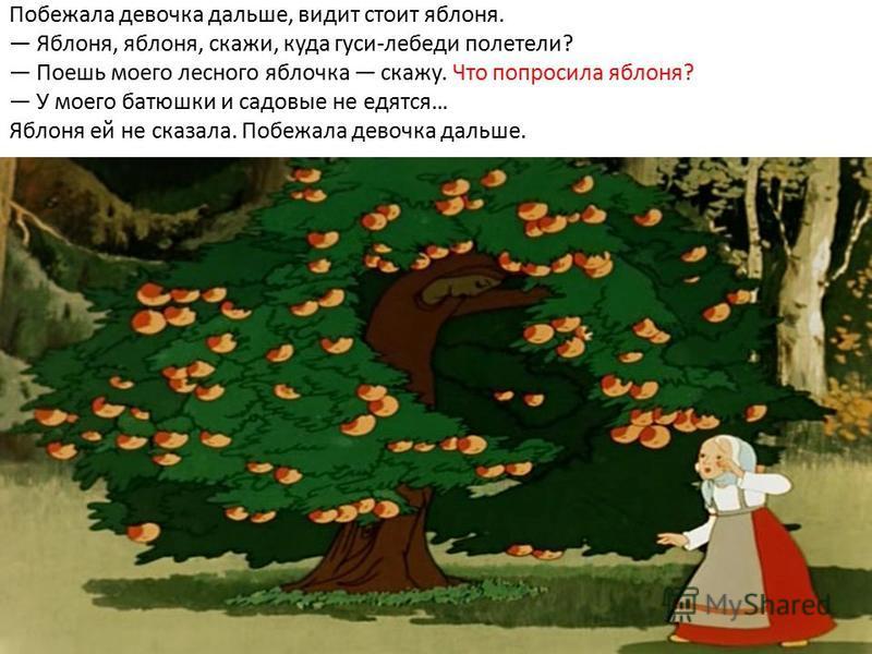 Побежала девочка дальше, видит стоит яблоня. Яблоня, яблоня, скажи, куда гуси-лебеди полетели? Поешь моего лесного яблочка скажу. Что попросила яблоня? У моего батюшки и садовые не едятся… Яблоня ей не сказала. Побежала девочка дальше.