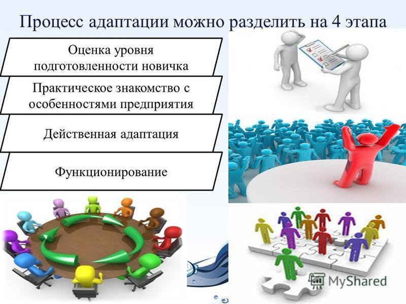 Процесс адаптации можно разделить на 4 этапа Оценка уровня подготовленности новичка Практическое знакомство с особенностями предприятия Действенная адаптация Функционирование