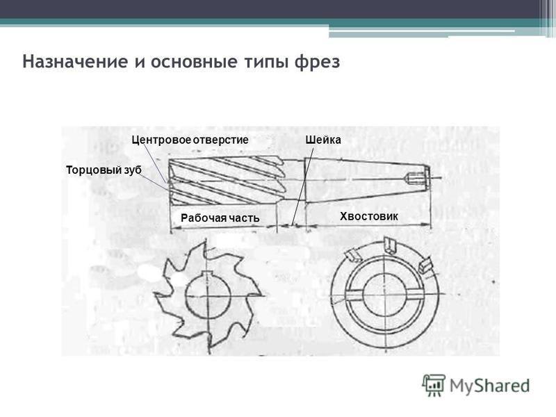 Назначение и основные типы фрез Центровое отверстие Торцовый зуб Рабочая часть Хвостовик Шейка