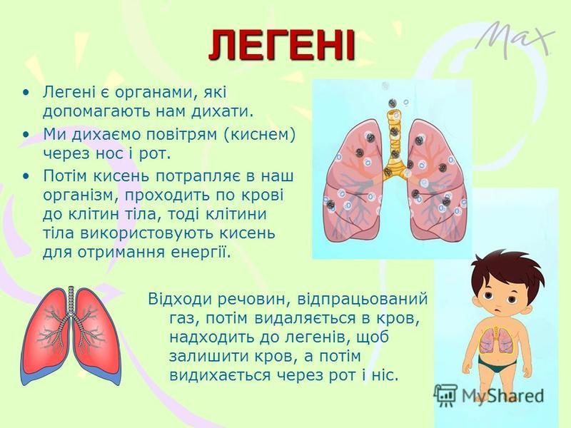 ЛЕГЕНІ Легені є органами, які допомагають нам дихати. Ми дихаємо повітрям (киснем) через нос і рот. Потім кисень потрапляє в наш організм, проходить по крові до клітин тіла, тоді клітини тіла використовують кисень для отримання енергії. Відходи речов