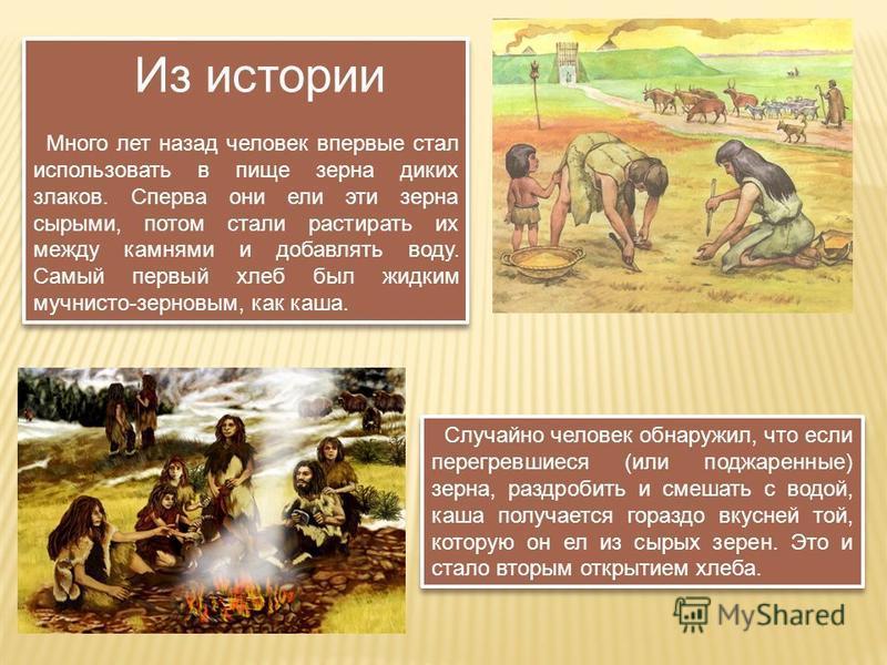 Из истории Много лет назад человек впервые стал использовать в пище зерна диких злаков. Сперва они ели эти зерна сырыми, потом стали растирать их между камнями и добавлять воду. Самый первый хлеб был жидким мучнисто-зерновым, как каша. Из истории Мно