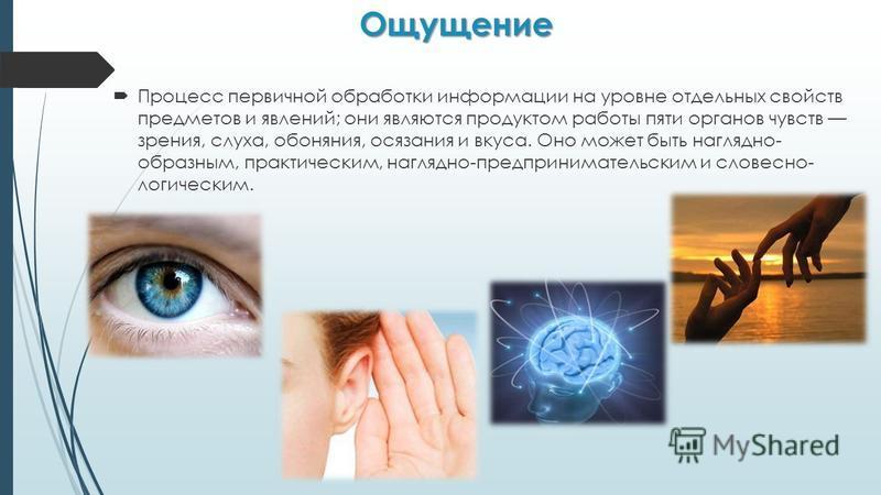 Ощущение Процесс первичной обработки информации на уровне отдельных свойств предметов и явлений; они являются продуктом работы пяти органов чувств зрения, слуха, обоняния, осязания и вкуса. Оно может быть наглядно- образным, практическим, наглядно-пр