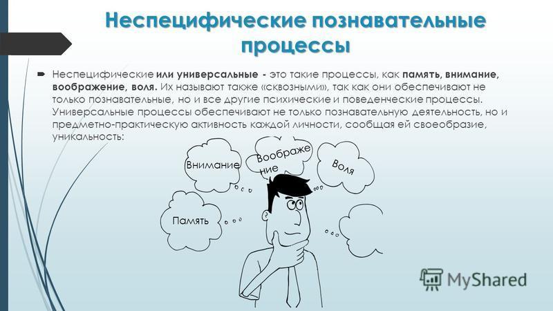 Неспецифические познавательные процессы Неспецифические или универсальные - это такие процессы, как память, внимание, воображение, воля. Их называют также «сквозными», так как они обеспечивают не только познавательные, но и все другие психические и п