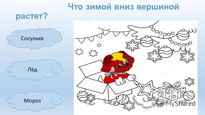 Мороз Лёд Сосулька Что зимой вниз вершиной растет?