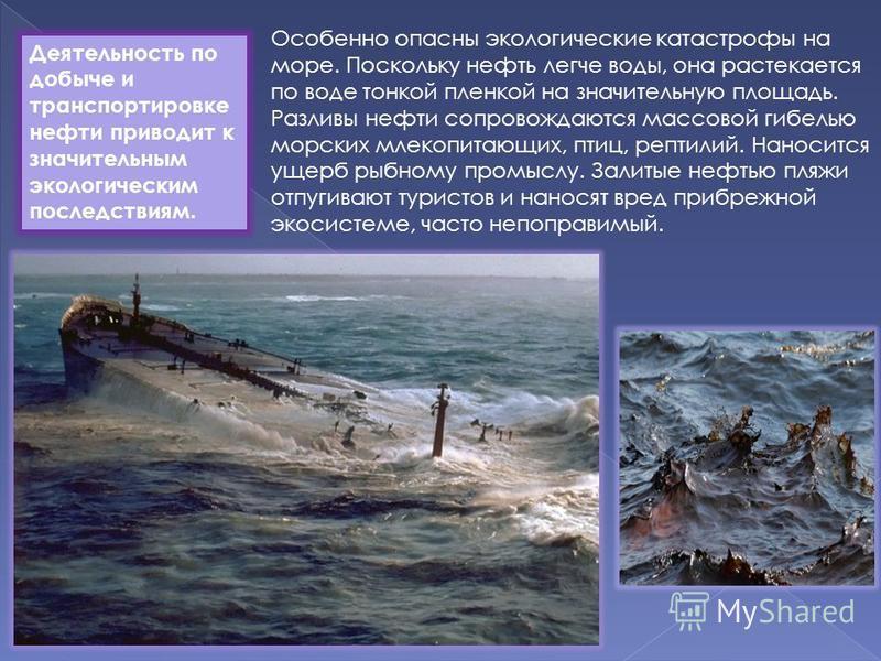 Особенно опасны экологические катастрофы на море. Поскольку нефть легче воды, она растекается по воде тонкой пленкой на значительную площадь. Разливы нефти сопровождаются массовой гибелью морских млекопитающих, птиц, рептилий. Наносится ущерб рыбному